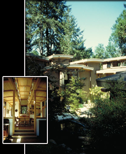 Family compound with two houses and guest house around Japanese garden. Passive solar. Cedar and fir.